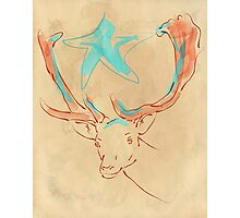 Magic Star Deer Photographic Print