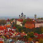 Atop Turreted Tallinn by M-EK