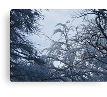 Falling snow Canvas Print