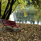 River Bench by Jess Meacham