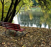 River Bench by Jess Meacham