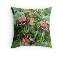 Zebra long wing butterfly trio Throw Pillow