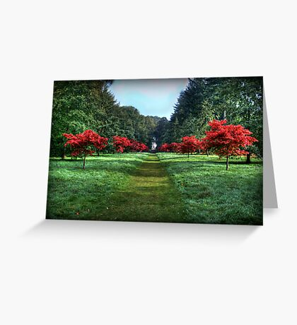 The Avenue Greeting Card