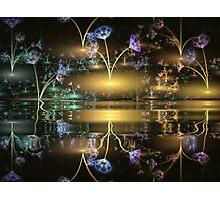 Night Flowers Photographic Print