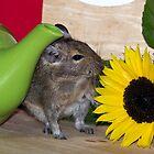 Green Tea & Sunflower by lmaiphotography