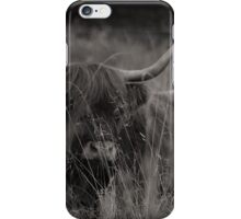 Long horned highland cattle iPhone Case/Skin