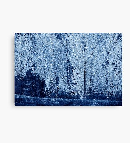 Blue #4 Canvas Print