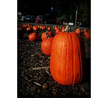 Pumpkins Photographic Print