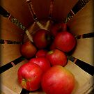 Apples in Barrel by Amanda Vontobel Photography