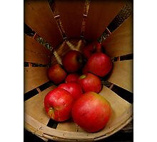 Apples in Barrel Photographic Print