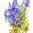 Irises and Leucadendrons by Dai Wynn