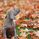God Made Me Special by DebbieCHayes