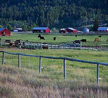 Classic Idaho by Rob Atkinson