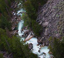 Milky Stream by Rob Atkinson