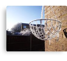 Wintery hanging basket.  Canvas Print