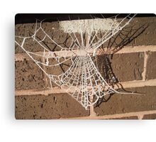 frosted web Canvas Print