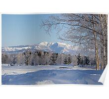 Winter landscape Japan Poster