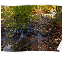 Trickling leaves on warm Autumn days Poster