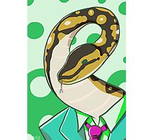 Business Snake Photographic Print