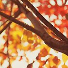 another autumn day by beverlylefevre