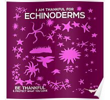 I Am Thankful For Echinoderms Poster