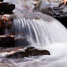 Rushing Creek by Jeanne Sheridan