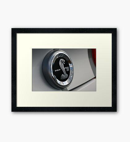 GT500 Shelby  Super Snake Framed Print