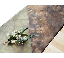 Table Runner River Red Gum Photographic Print