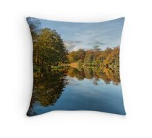 Autumnal Reflections Throw Pillow