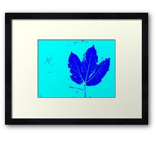 Dark Blue Leaf With Light Blue Background Framed Print