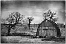 Barren by KBritt