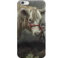 At the State fair iPhone Case/Skin