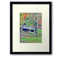 Cows In Autumn Framed Print