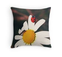 Ladybugs and daisies 2 - Byåsen, Trondheim Throw Pillow