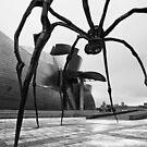 The Spider Of Bilbao by Unai Ileaña