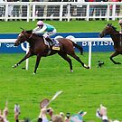 Frankel, the last victory.  by lulu kyriacou