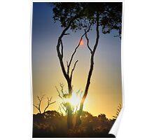 A Model Sunset Poster