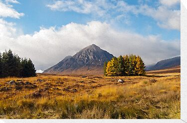 Buachaille Etive Mor by Margaret S Sweeny