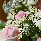 Congratulations! 3 by James Stevens