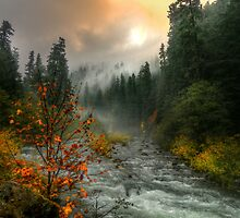 A Place in My Heart by Charles & Patricia   Harkins ~ Picture Oregon