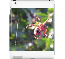 Red Spider on Web 3 iPad Case/Skin