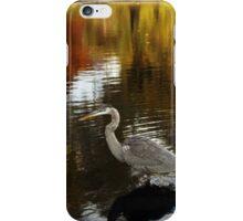 Larz Anderson park guest  iPhone Case/Skin