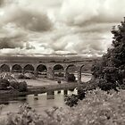 The Railway bridge in Berwick upon Tweed by Phillip Shannon