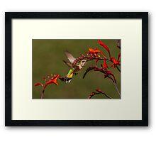 PRETTY AMONG FLOWERS Framed Print