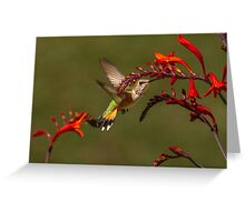 PRETTY AMONG FLOWERS Greeting Card