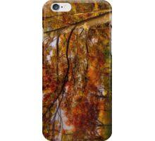 Fall Road,Chestnut Hill, Massachusetts iPhone Case/Skin