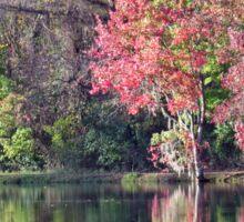 Fall Trees Sticker