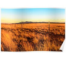 Barbed Wire Fence New Mexico Poster