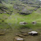 Refelections - Levers Water, Coniston, Lake District by Asher Haynes