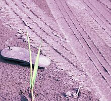 Desolate Sandal by Upperleft Studios